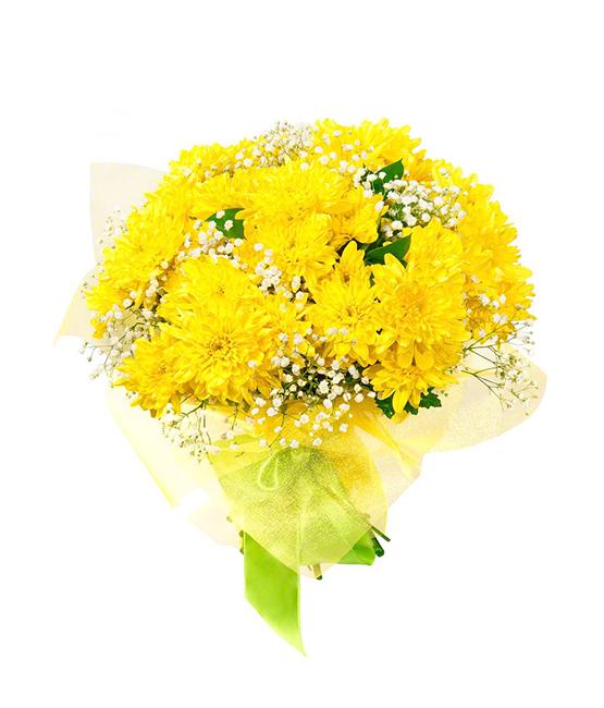 Buchete De Flori Crizanteme Galbene Cu Gypsophila